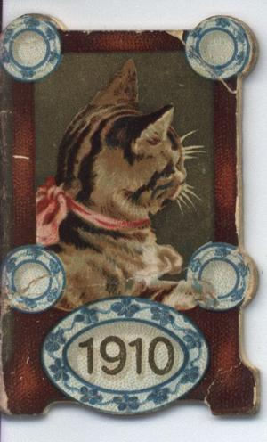 striped cat with pink bow and blue dishes