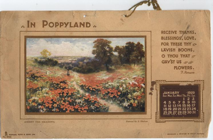 IN POPPYLAND AMIDST THE MEADOWS