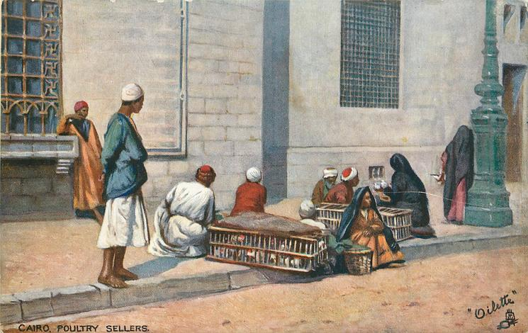 CAIRO. POULTRY SELLERS