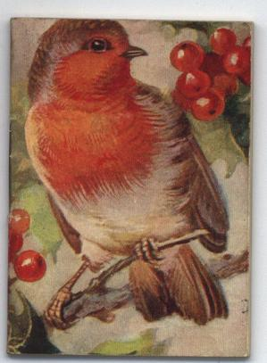 robin sitting on a branch looking at red berries