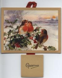 WAYSIDE GOSSIPS (title on reverse) three robins on branches