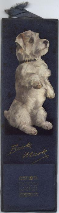 BOOK MARK terrier type dog sitting upright and begging