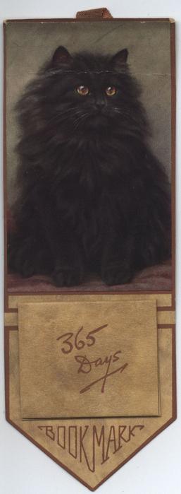 BOOK MARK black cat