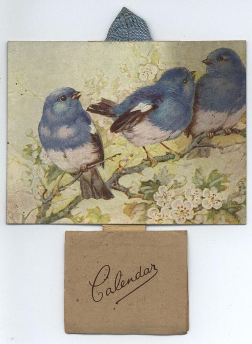 three bluebirds on a branch