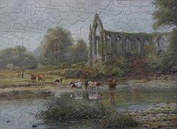 THE OLD ABBEY