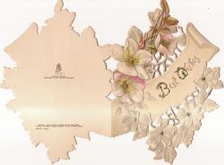 BEST WISHES glittered on cream plaque. pale pink and white roses with jewelled centres
