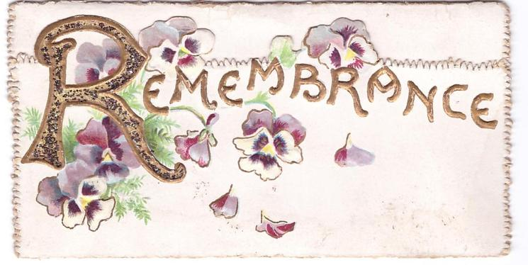 REMEMBRANCE pansies