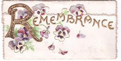 REMEMBRANCE pansies