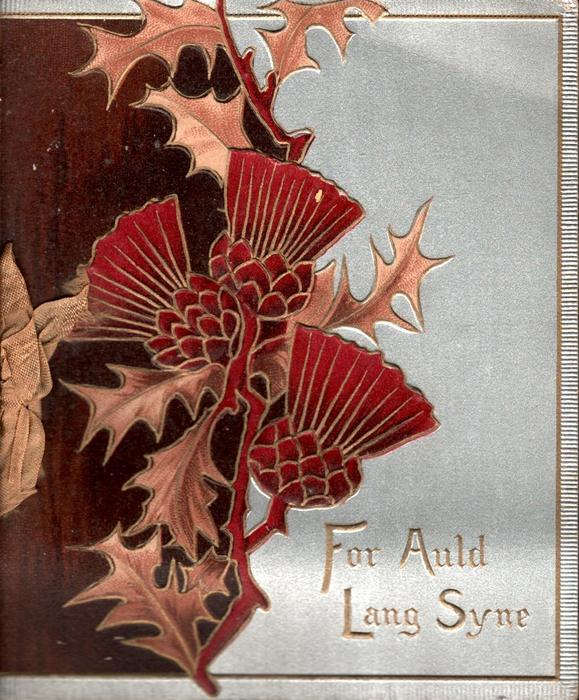 FOR AULD LANG SYNE thistles in front of brown background left, grey background right