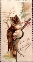 A MERRY CHRISTMAS owl stands playing banjo,