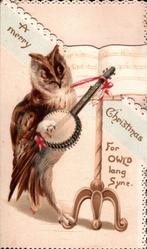 A MERRY CHRISTMAS, diagonally, owl stands playing banjo, FOR OWL'D LANG SYNE lower front right
