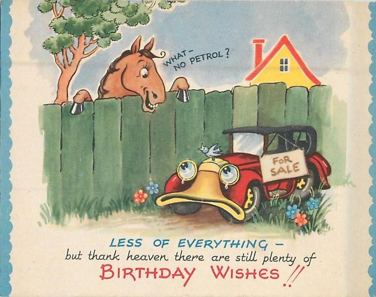 BIRTHDAY WISHES!! horse peers over fence and speaks to car posted FOR SALE