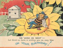 ON YOUR BIRTHDAY! bee reclines in chair on top of sunflower