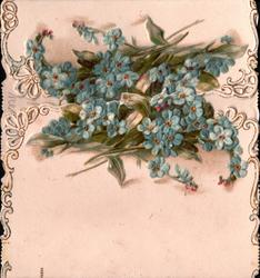 no front title, sprays of blue forget-me-nots where left & right flaps join, marginal perforated designs