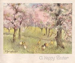 A HAPPY EASTER hens roam under blossoming trees