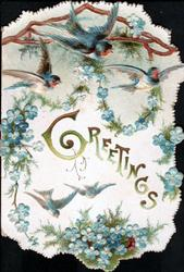 GREETINGS in gilt many blue-birds above garlands of blue forget-me-nots