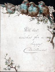 WITH BEST WISHES FOR A HAPPY CHRISTMAS below four blue-birds among blossom