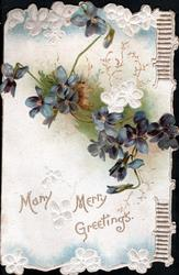 MANY MERRY GREETINGS below blue & white violets