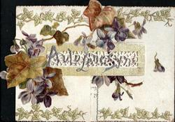 AULD LANG SYNE over perforated panel, violets & ivy above & below, ivy round margins