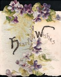 HEARTY WISHES(H & W glittered & iluminated) violets above & below