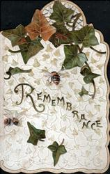 REMEMBRANCE in gilt, large ivy leaves above bee, background of tiny leaves
