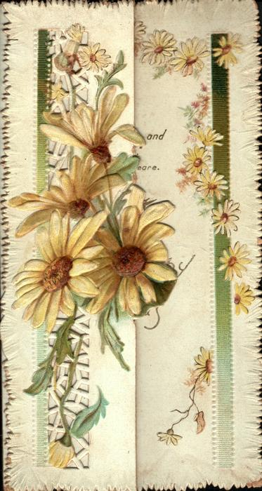 no front title, yellow daisies vertically  in front of perforated design on left flap, smaller daisies right