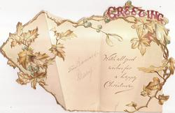 GREETING in pink above yellow/green holly & ivy continued inside & on flap