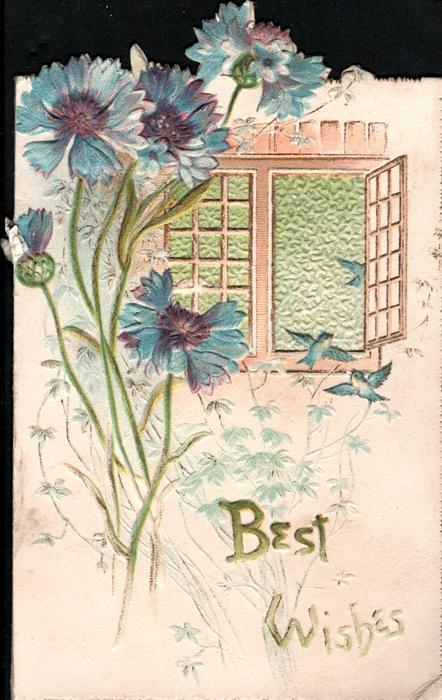 BEST WISHES  below right, blue cornflowers left of open window & three blue-birds,
