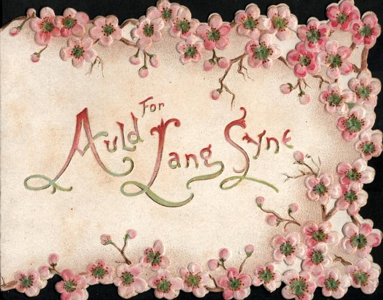 FOR OLD LANG SYNE(illuminated) surrounded on three sides by pink cherry blossom