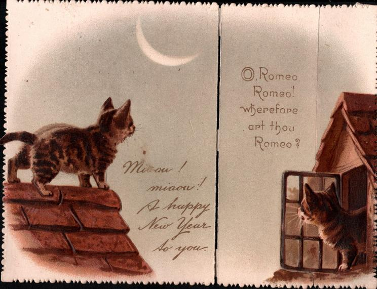 MEAOW! MEAOW!  A HAPPY NEW YEAR TO YOU cat on moon-lit roof, another comes out of window