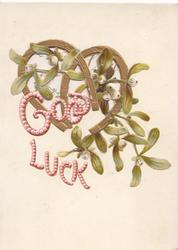 GOOD LUCK in pink, 2 gilt horseshoes & mistletoe with white berries,  perforated