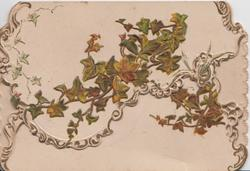 no front title, many ivy leaves,some autumn colours, on both front flaps