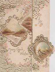 MANY GOOD WISHES belolw 2 rural insets & one of small robins,  heavily perforated designs on both flaps
