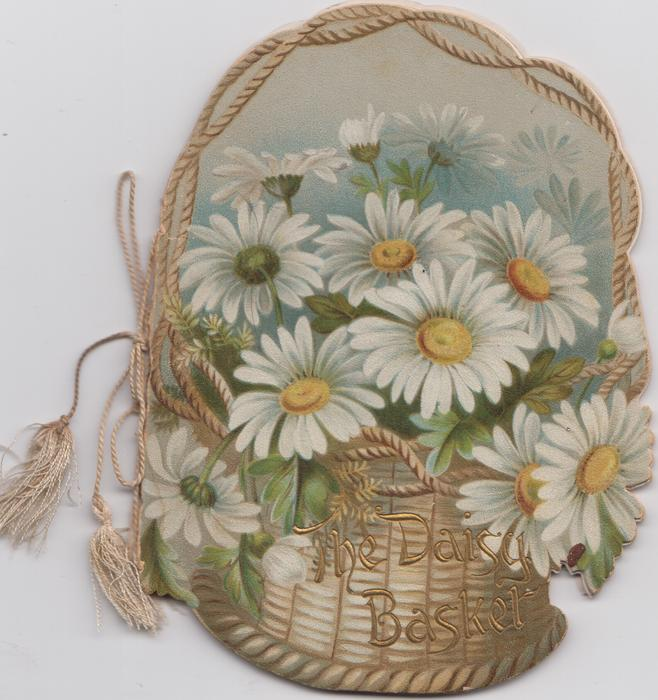 THE DAISY BASKET, white daisies in wicker basket, flowers, rural,