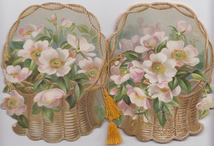 WILD ROSES in wicker basket, flowers, rural,