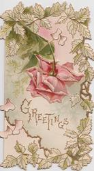 GREETINGS in gilt below pink rose drooping down, foliage round card (A)