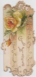 GOOD WISHES below white & orange rose & bud