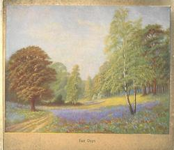 FAIR DAYS purple flowers grow in tree lined meadow, birch right, dirt path left, light brown border