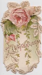 GREETINGS over perforated design below pink rose & bud