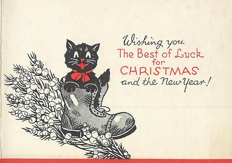 WISHING YOU THE BEST OF LUCK FOR CHRISTMAS AND THE NEW YEAR! black cat in boot on heather