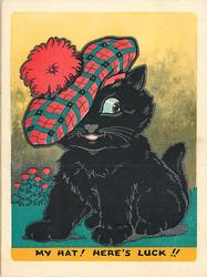 MY HAT! HERE'S LUCK!! black cat wears large Scottish tam, thistles in background left, white border