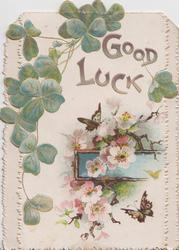 GOOD LUCK shamrock above pink wild roses & 2 butterflies