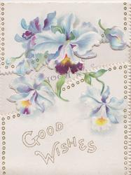 purple & white iris above GOOD WISHES on top & bottom flaps