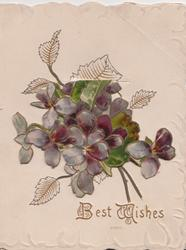 BEST WISHES in gilt below violets on small flap which lifts to show windmill