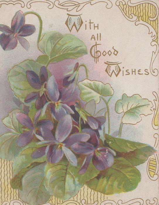 WITH ALL GOOD WISHES above right, violets on front below left