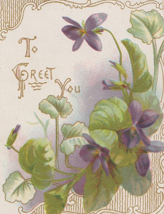 violets on front, TO GREET YOU upper left