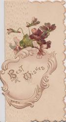 BEST WISHES in light brown in designed inset, violets above