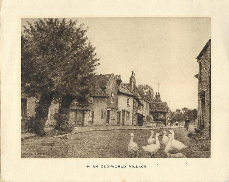 IN AN OLD-WORLD VILLAGE six ducks stand on village road, buildings behind, sepia
