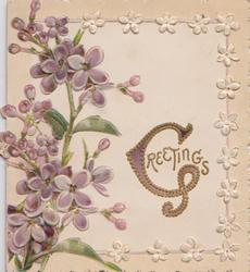 GREETINGS(illuminated G) in gilt right, violets left