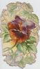 no front title, large central purple & bronze pansy, embossed designs around